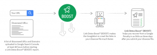 Schematic: How Link Detox Boost works